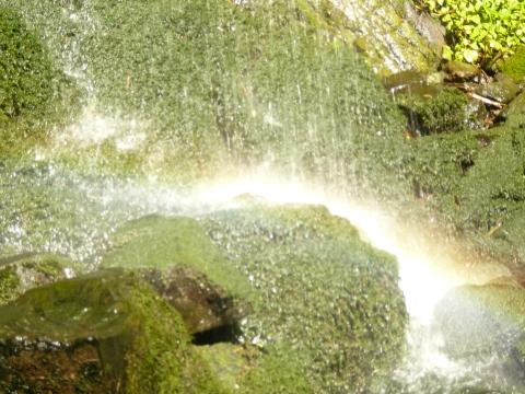 rainbowwater